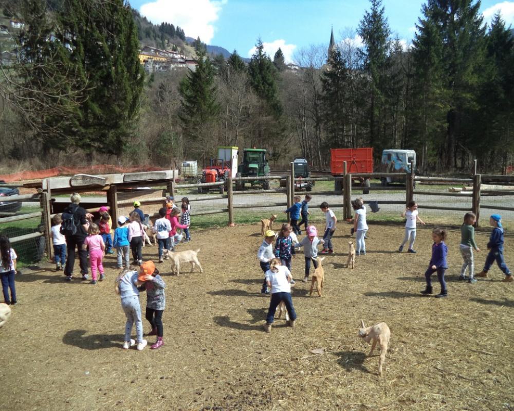 Bambini e capretti